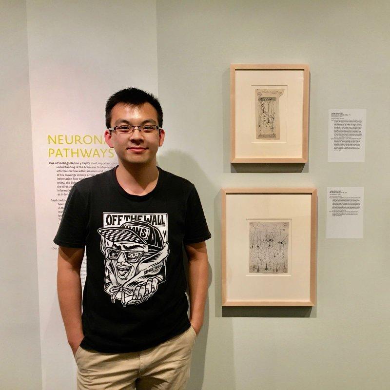 Yu Xie (谢禹) : Undergraduate Student